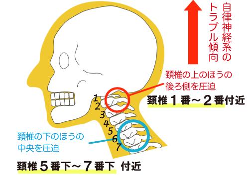 自律神経系のトラブルと首肩上肢のトラブル