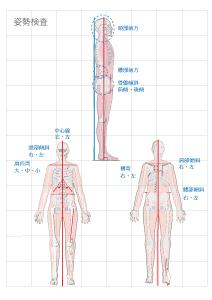姿勢検査表